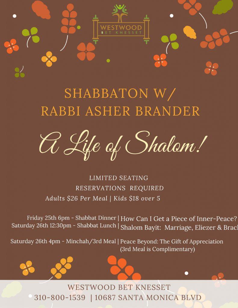 shabbat-of-shalom
